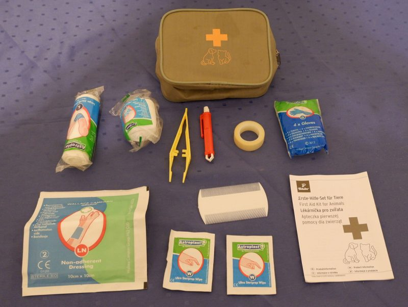 first aid kit for dogs